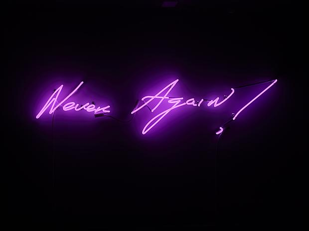 Tracey Emin Never Again