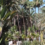 Seaside Palm Beach, Gran Canaria Hotel Review